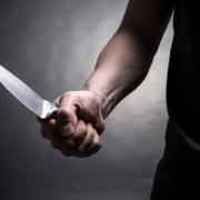 Маньяк, напавший на 9-летнюю девочку, пока не арестован
