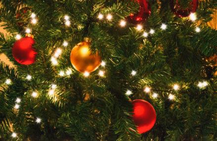 В этом году главную новогоднюю елку Омска установят на Музыкальной площади