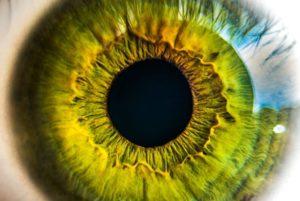 Житель Исилькуля две недели терпел перелом глазницы